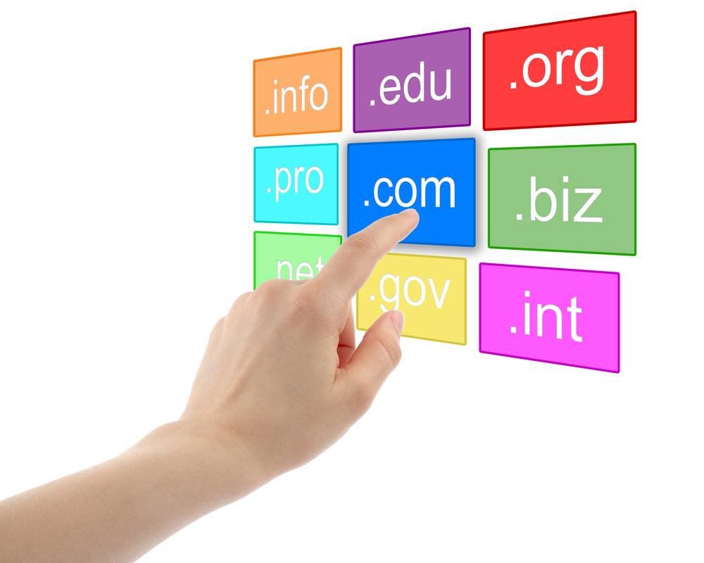 Before choosing a Domain Name for your Company - HostDime India ...